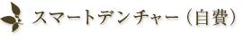 スマートデンチャー(自費)
